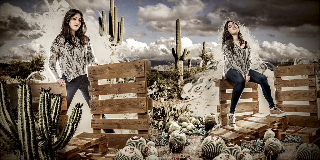 fotodesign ilona voss fotografie photography art kunst kreativ kaktus euro paletten