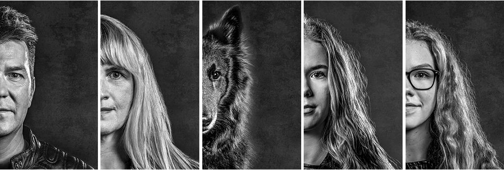 fotodesign ilona voss fotografie photography art kunst kreativ dog hund portrait